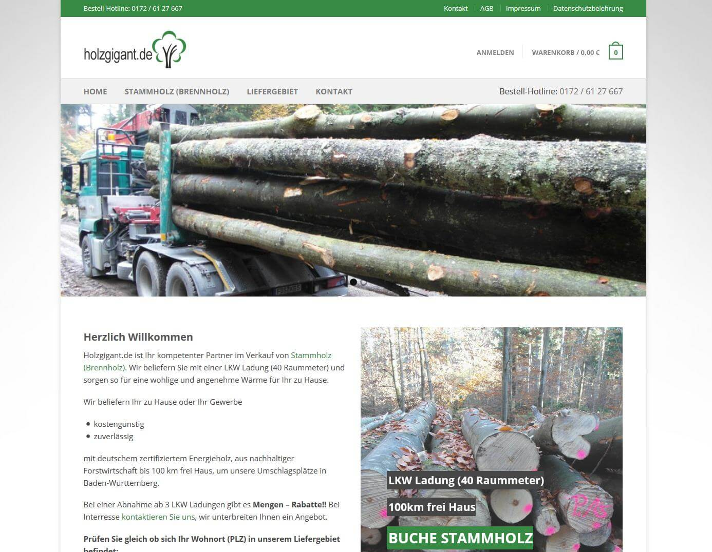 holzgigant_mast_media